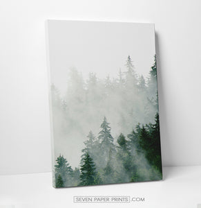 A third piece of a foggy green forest set. Got a lot of green in a right-bottom corner.