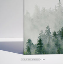 Load image into Gallery viewer, Misty Green Spruce Forest 3 Piece Canvas Photo Wall