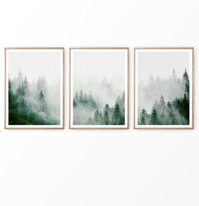 Misty Emerald Pines in Foggy Mountain Set of 3 Prints