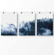 Load image into Gallery viewer, Foggy forest, blue forest photography, misty pine trees