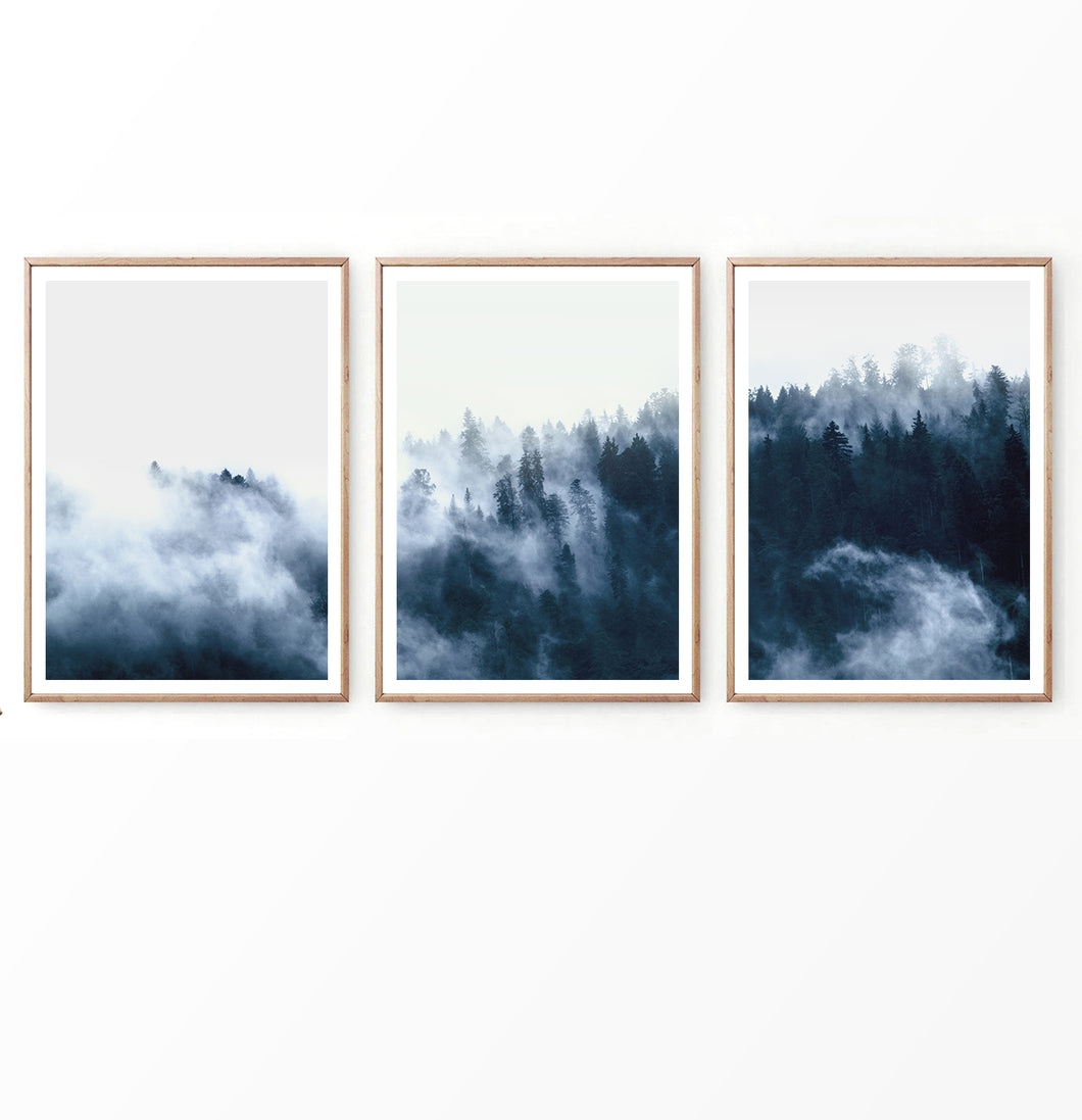 Foggy Forest Trees Set of 3 Large Prints