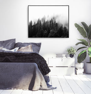 Dark Forest In Mist Black And White Poster