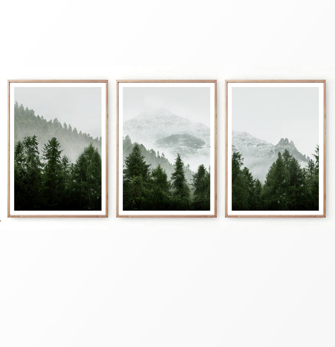 Pine Trees on Foggy Mountain Landscape Set of 3 Posters