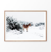 Load image into Gallery viewer, Horse in a snowy landscape wall art in a wooden frame