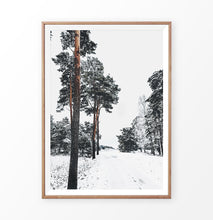 Load image into Gallery viewer, Snowy Pine Woods Road Wall Art in a wooden frame