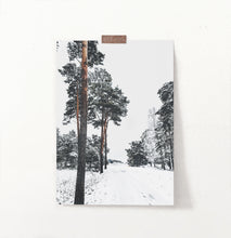 Load image into Gallery viewer, Snowy Pine Woods Road Wall Art