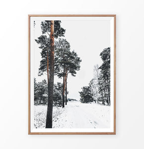Snowy Pine Woods Road Wall Art in a wooden frame
