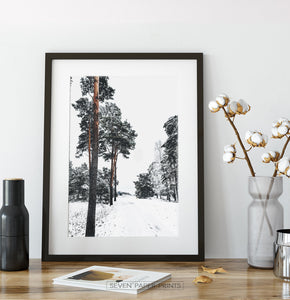 Snowy Pine Woods Road Wall Art in a black frame