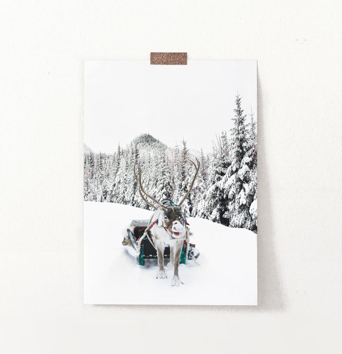 Christmas Sleigh Raindeer In Snowy Forest Wall Decor