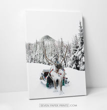 Load image into Gallery viewer, Christmas set of 3 canvases with reindeer #223