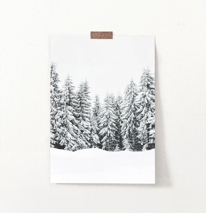 Snow-Covered Spruce Winter Forest Wall Art