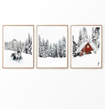 Load image into Gallery viewer, Reindeer  In Snowy Pine Forest Set of 3 Christmas Photos