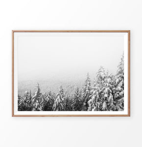 Wood-framed Winter Forest Valley Covered in Snow Photo Print