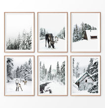 Load image into Gallery viewer, Winter Photography set of 6. Moose, Reindeer, River, Snowy Forest, Cabin