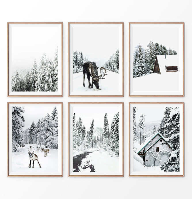 Winter Photography set of 6. Moose, Reindeer, River, Snowy Forest, Cabin