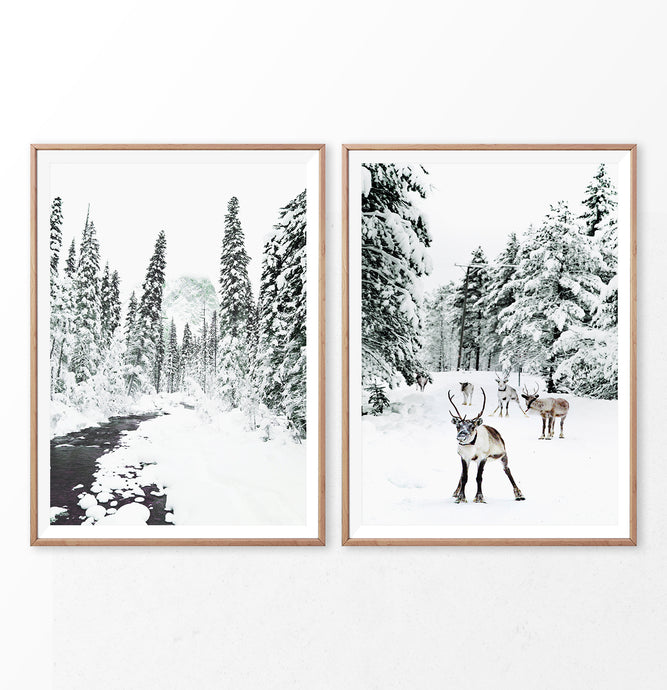 Winter Scene Set of 2 prints. Reindeer, river and pine trees in snow