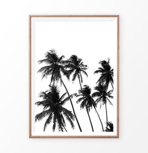 Palm trees wall print, tropical palms wall decor