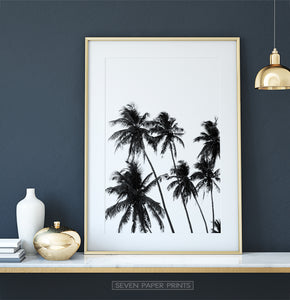 Black and White Tropical Palm Wall Decor