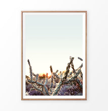 Load image into Gallery viewer, Cactus sunset print, desert sunrise wall art