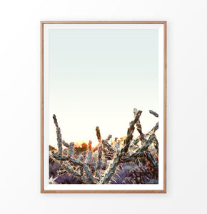 Cactus sunset print, desert sunrise wall art