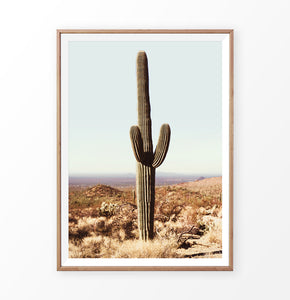 Large Cactus Print, Saguaro National Park