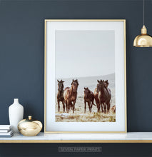 Load image into Gallery viewer, Brown Wild Horses Print