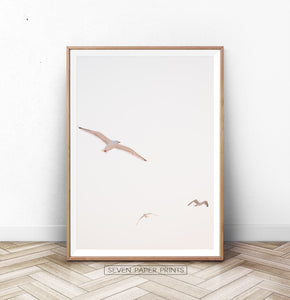 Flying Seagull Wall Art