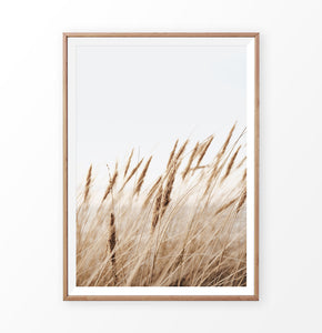 Common reed single print