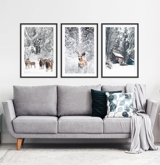 Framed Set of 3 Winter Forest Sheep, Deer and House Wall Art