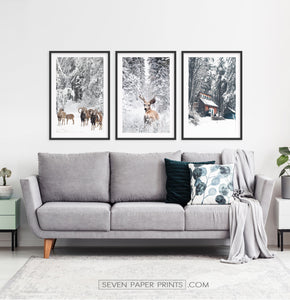 Lovely 3-Piece Set Of Winter Forestside Framed Posters above the sofa
