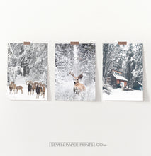 Load image into Gallery viewer, Lovely 3-Piece Set Of Winter Forestside Posters