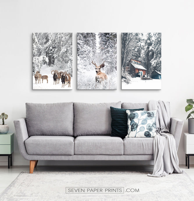 Winter County Animals In Snowy Forest 3 Piece Canvas