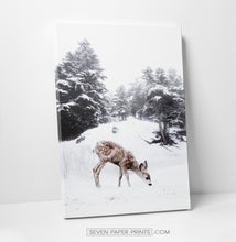 Load image into Gallery viewer, Deer on a snowy glade canvas print