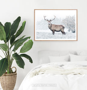 Wooden-framed photo print in the bedroom