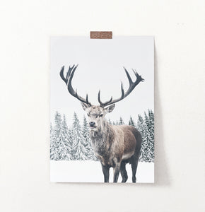 Great Horns Huge Deer On Winter Spacing Poster