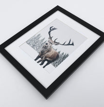Load image into Gallery viewer, Big brutal reindeer photo print in a black frame