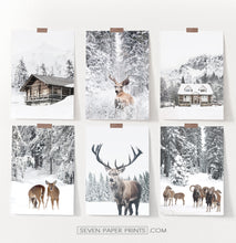 Load image into Gallery viewer, Set Of 6 Winter Coutrysides And Animals Photo Prints