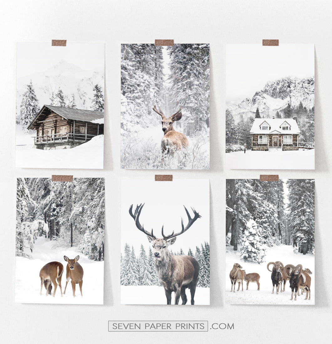 Set Of 6 Winter Coutrysides And Animals Photo Prints
