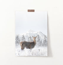 Load image into Gallery viewer, Lovely Deer In Winter Mountains With Spruces Wall Art