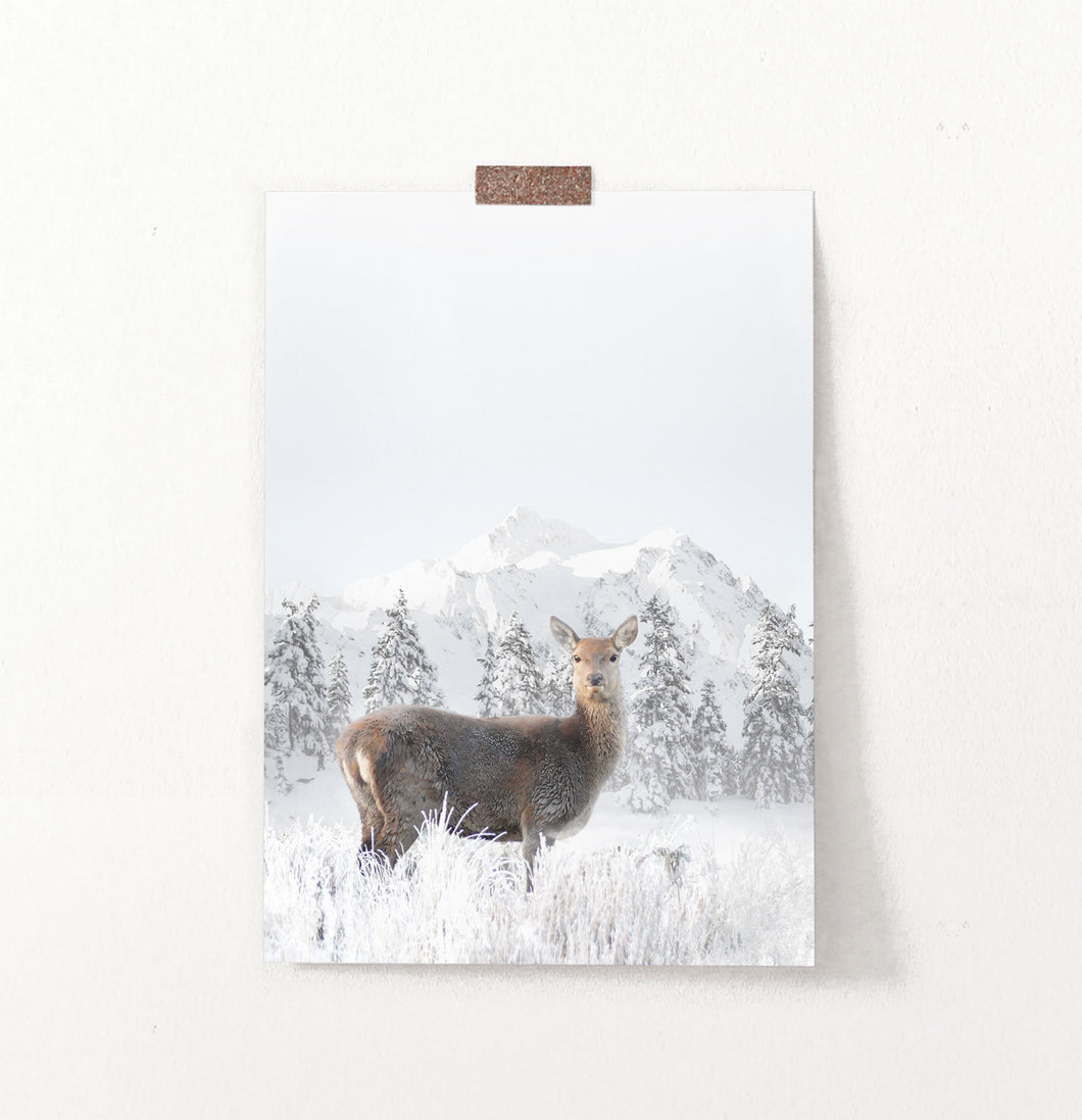 Lovely Deer In Winter Mountains With Spruces Wall Art