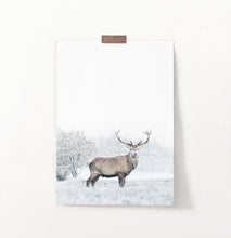 Load image into Gallery viewer, Great Alpha Male Deer On Snowy Background Wall Art