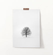 Load image into Gallery viewer, Tree On Snowy Field Black And White Photo Art