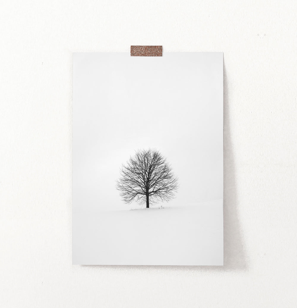 Tree On Snowy Field Black And White Photo Art