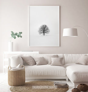 White-framed in the living room with white sofa