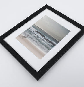 A framed print with a pelican on a coast
