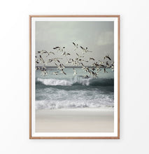 Load image into Gallery viewer, Seagulls Beach Photo High Waves
