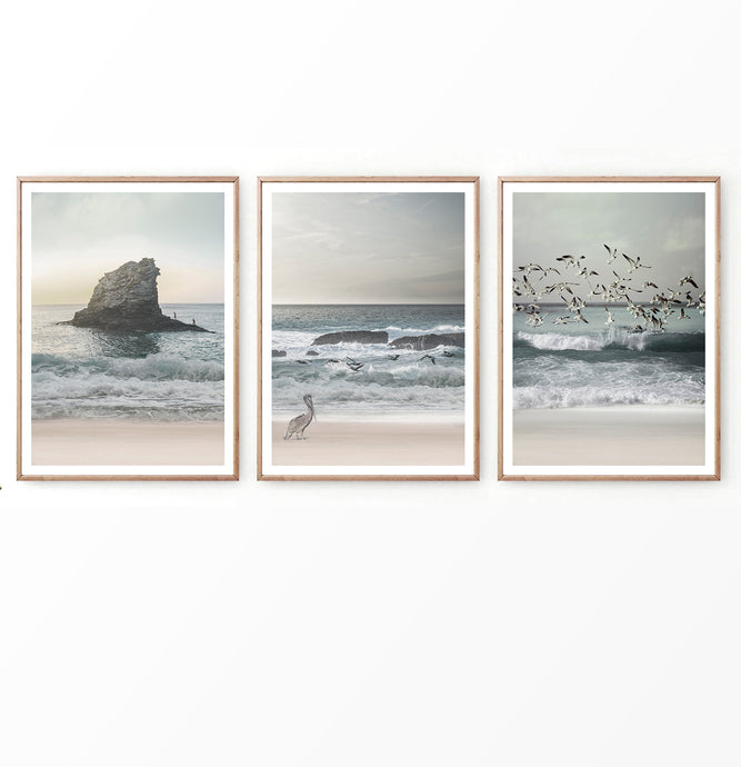 Sea Shore Photography Set of 3 Prints