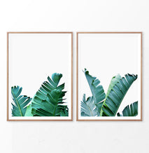 Load image into Gallery viewer, Green Banana Palm Leaf Set of 2 Prints