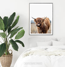 Load image into Gallery viewer, Highland Cow Photography, Bull Farmhouse Decor