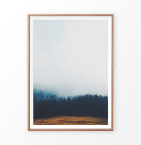 Foggy Pine Forest On Sandy Earth Photo Print